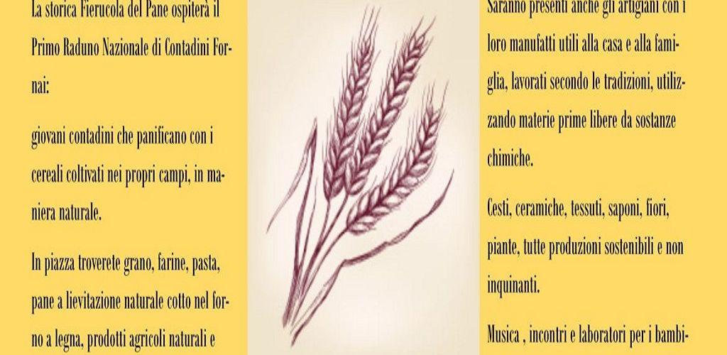 fierucola del pane ok