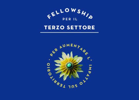 fellowship_3settore-postSITO-03